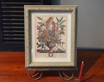 January Flowers Framed Print Twelve Months of Flowers  Print Peter Fuber Pieter Casteels , I Ship Internationally