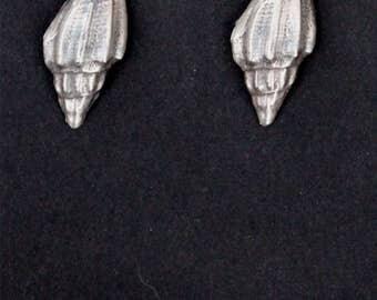 Silver Shell Post Earrings