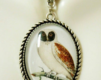 Brown faced owl pendant with chain - BAP09-030