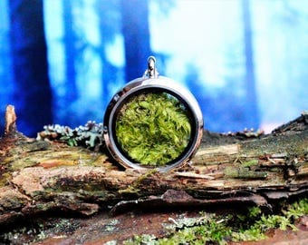 Real moss necklace , terrarium necklace , moss necklace , locket necklace , moss jewelry , fairy tale necklace