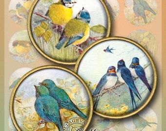 "Little Birds Digital Collage Sheet 1.5"" 1.25"" 30 mm 25 mm 1 inch circles, Vintage Ephemera, Swallow Titmouse Bluebird Round images (EA01-c)"