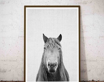 Horse Print, Minimalist Horse, Black and White Photo, Wall Art Photography, Icelandic Horse, Black And White Prints, Printable Large Poster