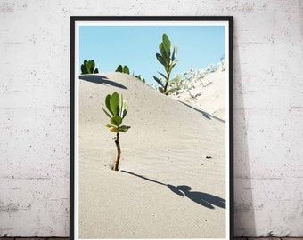 Desert Artwork,Abandon Wall Art, Wildlife, Wilderness Prints, Wilderness Decor, Soth Western Decor, Southwestern Decor, Western Art Decor