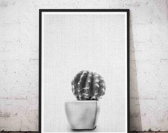 Cactus Photo Print Black and White Photography, Southwestern Decor, Printable Cactus Wall Art, Mexican Decor, Cacti Print, Turquoise Art