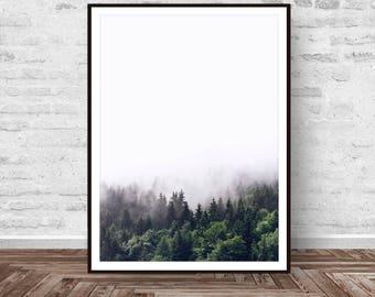 Forest Print, Landscape Print, Forest Wall Art, Forest Photography, Nature Print, Nature Decor, Decor Print, Art Modern, Instant Download