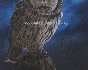 Tawny Moon, Tawny Owl, Original oil painting.