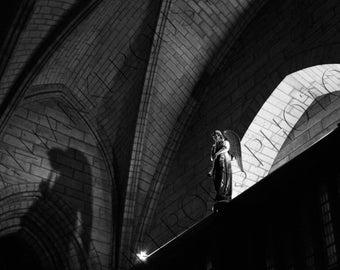 Angel at Notre Dame