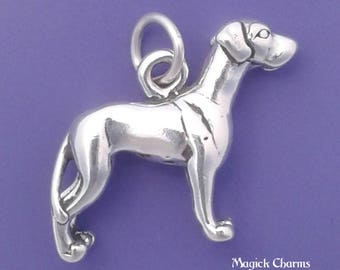 GREAT DANE Charm .925 Sterling Silver Dog Pendant - lp3526