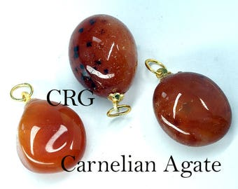 Tumbled CARNELIAN AGATE Pendant with Gold Bail (TU18DG)