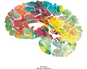 "Human Brain Print - Sagittal - 8.5"" x 8.5"" Watercolor Brain Art - Colorful Neurology, Neuroscience and Psychology Artwork by J. Sayuri"
