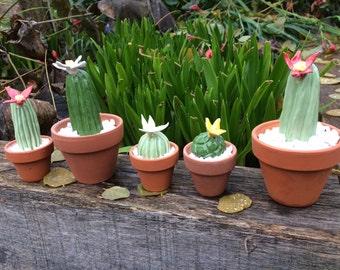 Cute Ceramic Cactus (large)