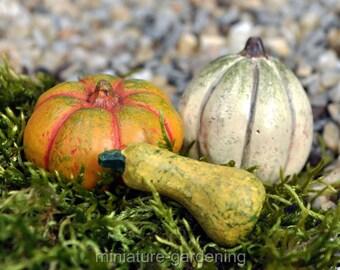 Autumn Pumpkin Patch, Set of 3 for Miniature Garden, Fairy Garden