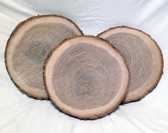 "8 Oak Wood Log Slices 10"" to 12"" Crafts Rustic Wedding Cabin Décor Disk"