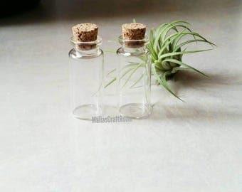 Mini Cork Bottles 2 Pack