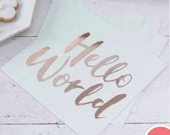 Mint & Rose Gold Paper Napkins - Hello World