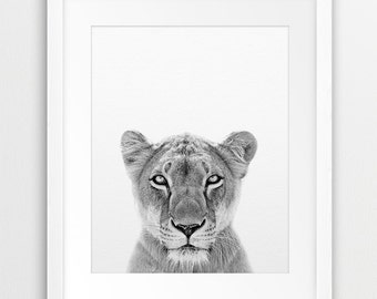 Lioness Print, Safari African Animal, Lioness Photo, Black And White Animal Print, Nursery, Kids Room Wall Art, Nursery Decor, Printable Art