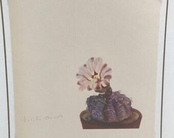 1940s Succulent Print
