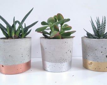 Large Concrete Metallic Dipped Succulent/Cactus Planter