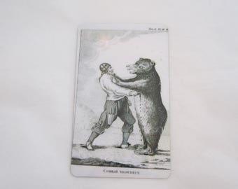 Viking Versus Bear Magnet