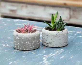 Concrete Planter plant pot