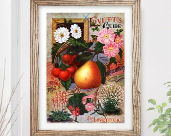 VINTAGE KITCHEN Fruit Dark Art Print / Poster Cooking Food Victorian Farm Harvest Illustration Painting Home A4 A3 A2 (10 Size Options)