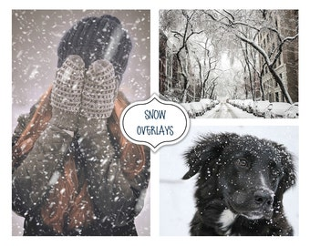 Snow Overlays, Photo editing, Christmas Tree, Winter Effects, Real Snow Overlays, Instant Download, Christmas,Blowing Snow,Snow photo effect