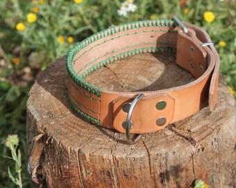 Leather dog collar.