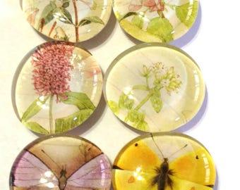 CUTE flower magnets,  glass magnets, refrigerator magnets, memo board magnets , magnet set of 6, cute kitchen decor, kitchen