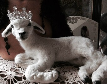 Vintage lamb, antique lamb, taxidermy, from France - my most beautiful