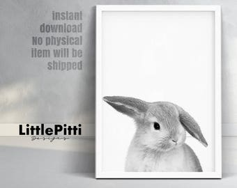 Baby rabbit animal, baby bunny rabbit, nursery printable, kids room decor, rabbit photography, black and white animal print, woodland animal