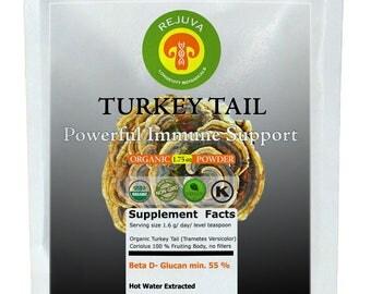 Organic TURKEY TAIL (Coriolus) Extract USDA 100% Fruiing Body 1.75 oz Micronized Powder