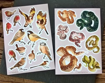 Birds and Snake - sticker sheet