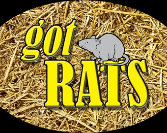 Got Rats with Rat Graphic