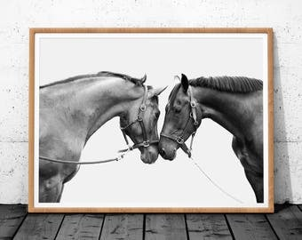 Horse Print, Horse Photo, Black and White Photography, Horse Print Wall Art, Horse Printable Art, Horses Print, Horse Wall Print, Horse Art