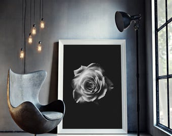 Black and White Rose Print, Rose Print, Flowers Print, Botanical Art, Flowers Photography, Floral Print, Digital Download - 135