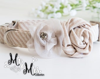 Dog Collar with roses and crystal beads - Mr. & Mrs. PASSION - in a dapper stripes