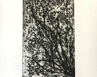 FLOWER etching, ENGRAVING, aquatint and drypoint, INTAGLIO