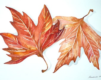 Autumn Watercolor  Botanical leaf  Leaves Painting Original  Leaf Watercolor Fall Leaves  Botanical Art