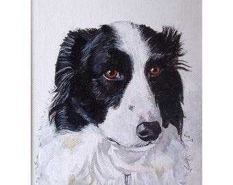 Border Collie Dog, original acrylic painting, ready to ship.