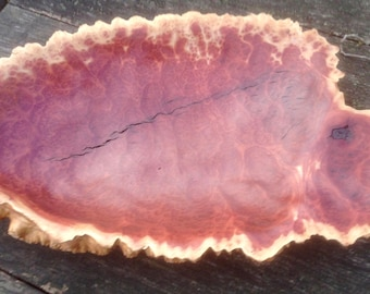 Large Australian Red Mallee burl