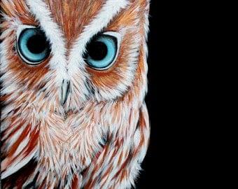 Blue eyed owl painting