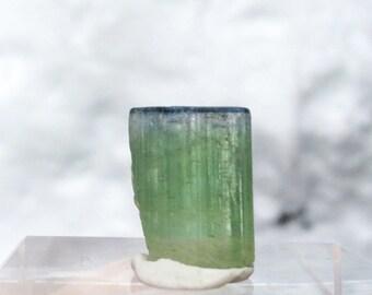 14.9 ct bi-color tourmaline from Kunar, Afghanistan (#50)