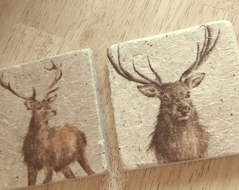 Stunning Stag Natural stone coasters - Hand decorated