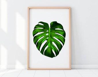 Monstera, Tropical Leaf, Unusual Leaf, Monstera Artwork, Monstera Printable, Tropical Printable, Leaf Photography, Botanical Print
