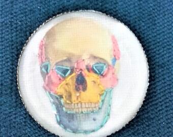 Embroidered hand illustration ring skull anatomical vintage