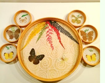 Vintage Pressed Butterfly and Lace Rattan Tray Set with 6 Matching Coasters