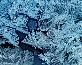 ice crystals wall art winter decor fine art photography beautiful decor photographic prints photography decor blue white