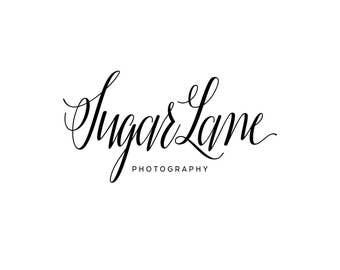 Modern Calligraphy Logo / Photography Logo and Watermarks / Modern Logo Design / Premade Logo Designer / Cursive Blog Header / Script Logo