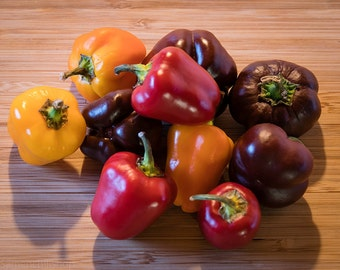 Rare mini peppers mix – Super doudoubelem 3 / 3 varieties sweet mini bell pepper