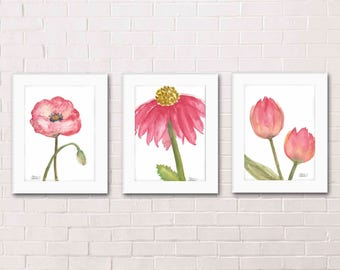 3 Pink Spring Flower Paintings - Poppy, Cone Flower, and Tulips - Watercolor Archival Art Print